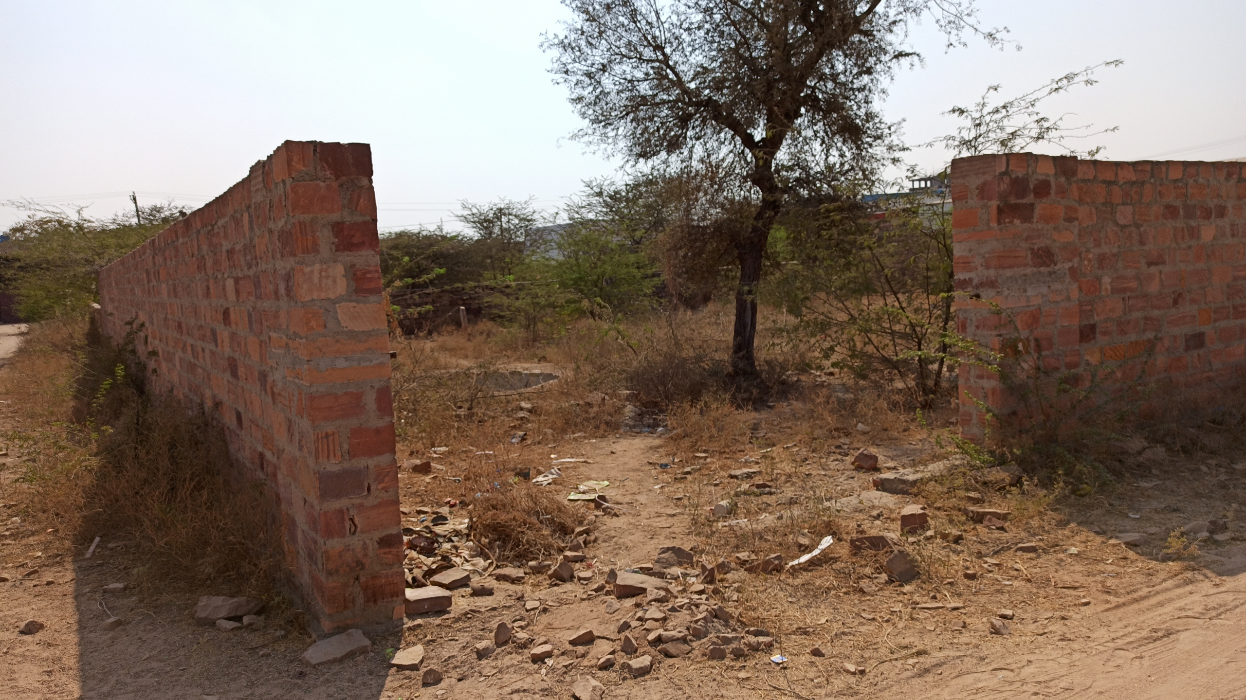 Surana Realtors - Agricultural land in jodhpur